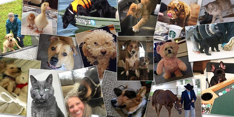These Furry Friends photos are adorable! Post yours today!